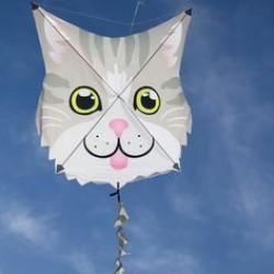 Fun Flyer Kite - Gray Cat